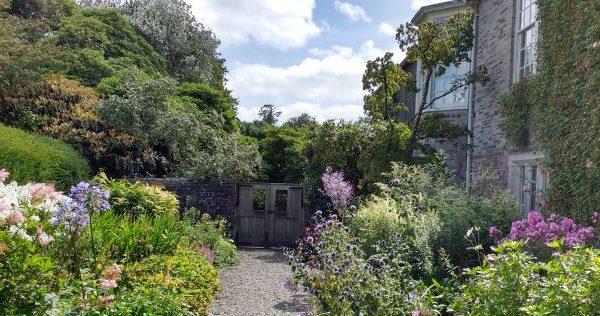 garden-window